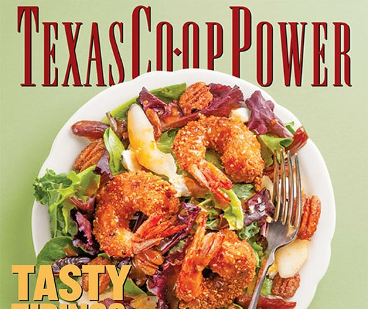 Texas Co-op Power Magazine